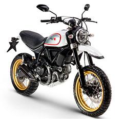 Ducatti Desert Sled